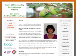 Acorn CBT Counselling Service, Wexford | Cognitive Behavioural Therapy | Depression, Anxiety, Anger Management, Panic Attacks, PTSD, Stress